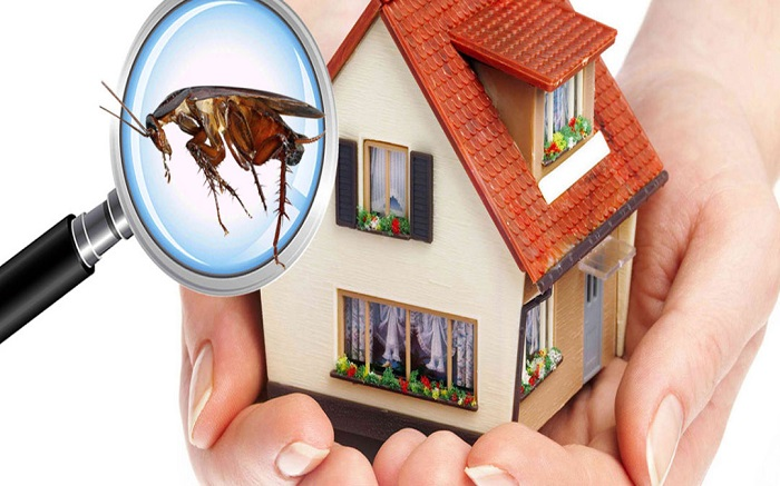 24 Hour Termite & Pest Control Miami Beach, FL 33109